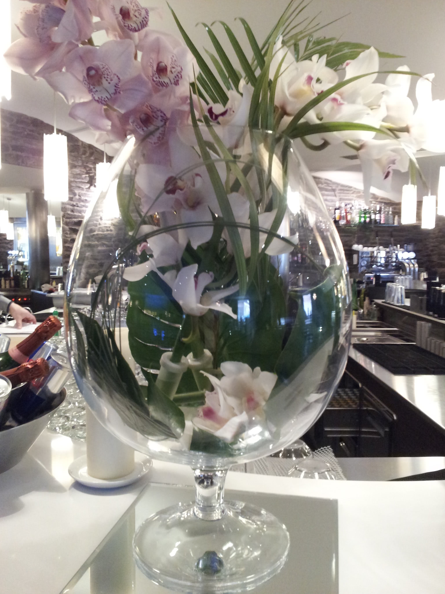 Brandy Glass 5